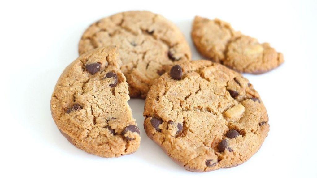 Cookie- og privatlivspolitik hos Erik Back