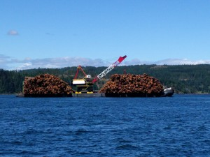 The only obstruction in Seymour Narrows