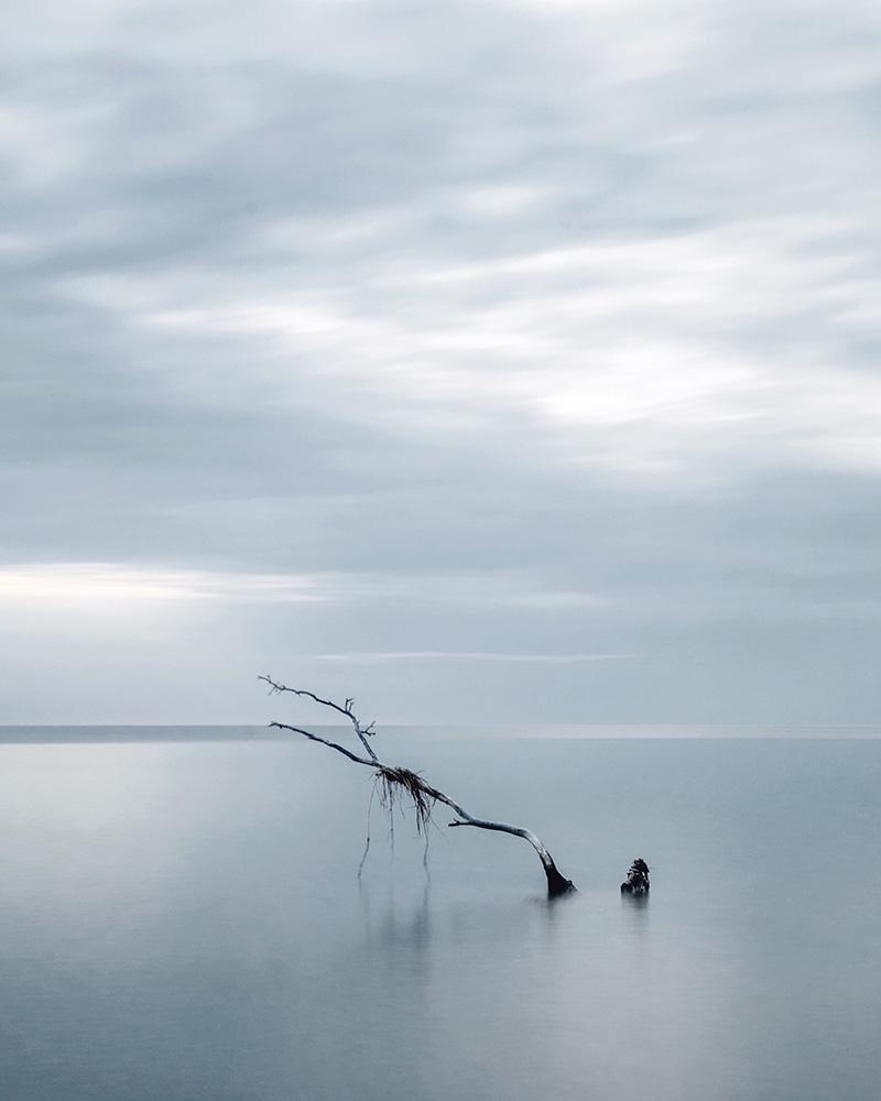 alonesea