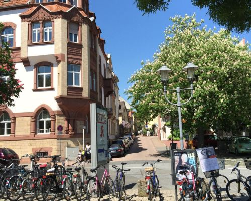 Our amazing neighbourhood in Heidelberg