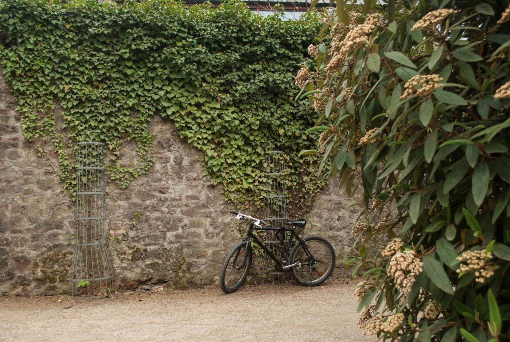 Trier Palasgarten