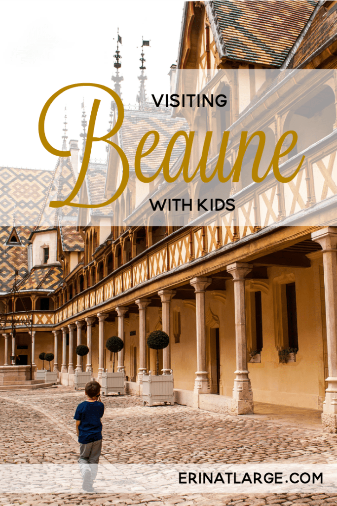 Visiting Beaune with kids PIN