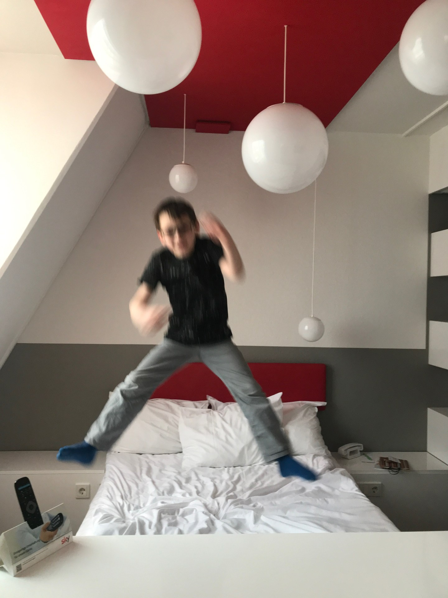 Ibis hotels Germany
