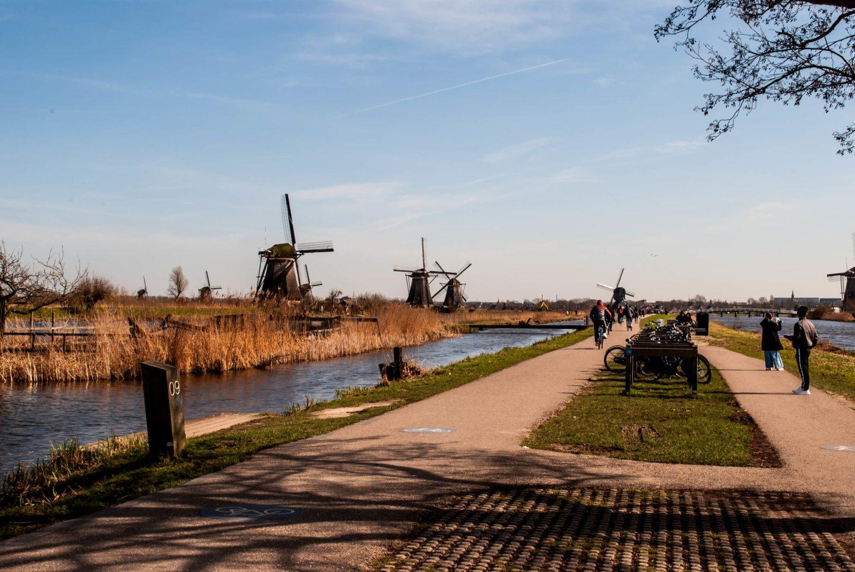 Kinderdijk scenery 5