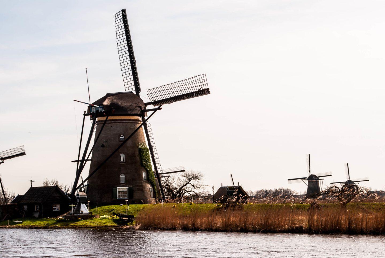 Kinderdijk scenery 6