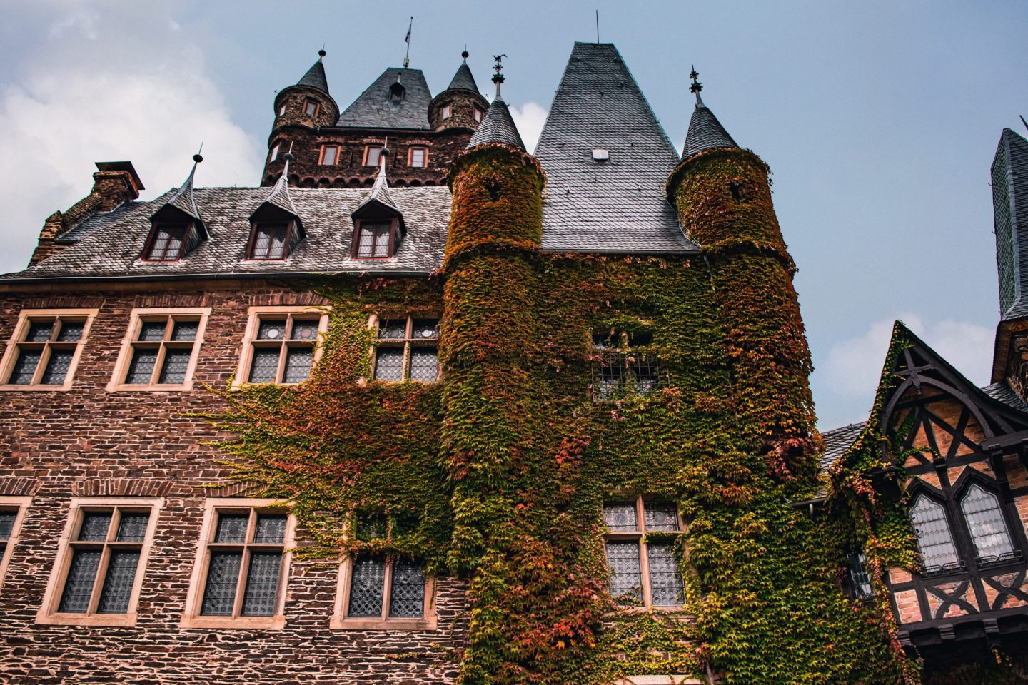 vines and cochem castle gate 2
