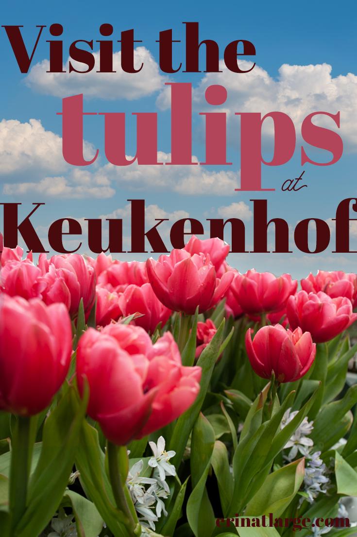 Tulips-at-Keukenhof-PIN-2