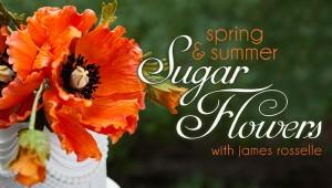 James Rosselle Sugar Flower Craftsy Class Discount Link | ErinBakes.com