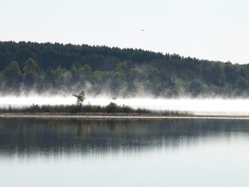 Foggy Morning on the Lake
