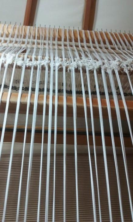 warp strands
