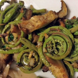 Spring delicacy: Fiddleheads