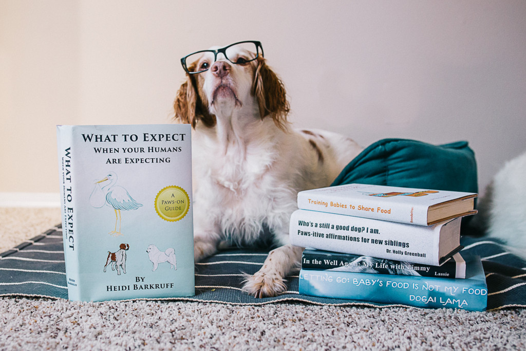 A DOGgone Great Announcement Families Weddings Moments