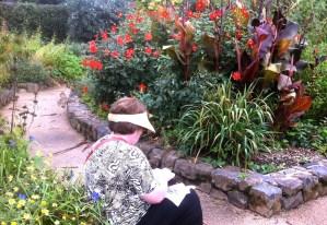 Mt Tomah Gardens