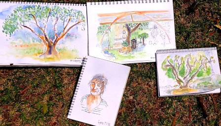 Wed Jan 7. Sketching in the park
