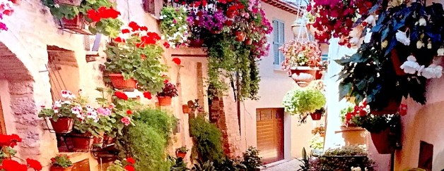 French village background. Ivy Cafe & Restaurant