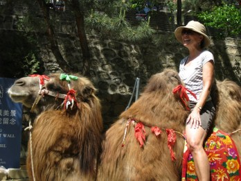 My mom thrilled to be riding a camel