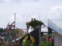 tempelhof garten1
