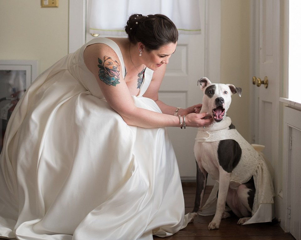 Virginia Wedding Venues that allow dogs