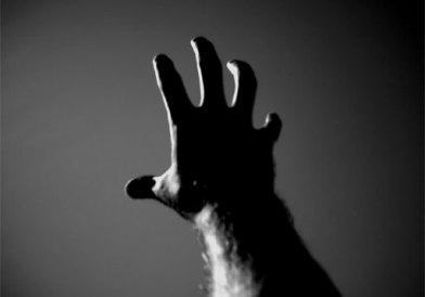 al alcance de la mano...o no