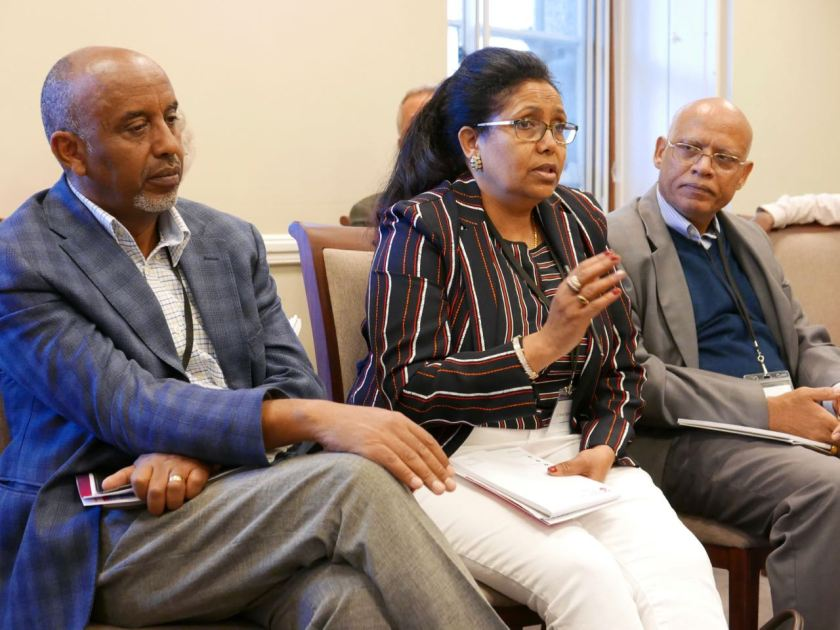 Discussions, Eritrea Conference ICS