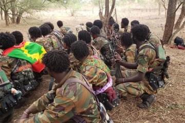 Oromo Liberation Army