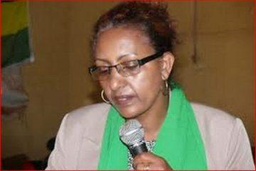 Ambassador Zenebu