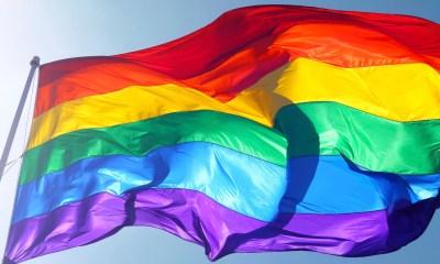 Bandera gay hondeando