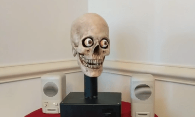 Amazon Echo Calavera