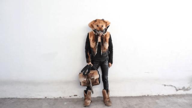 ¿Recogerías un perro atropellado para convertirlo en arte? Esta mexicana sí