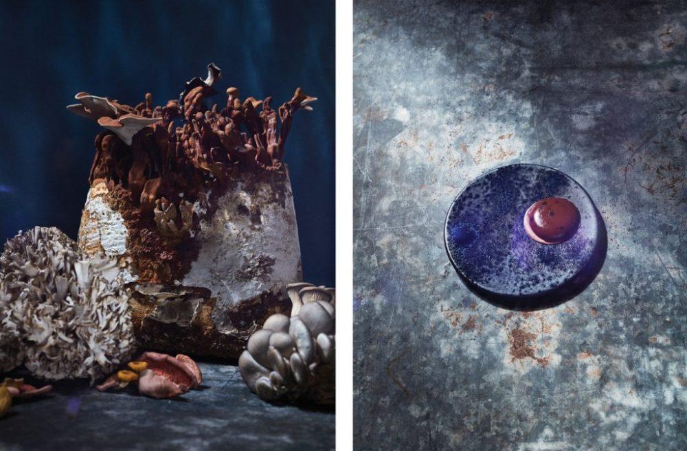 La artista Allie Wist imagina cómo será la comida del futuro gracias al cambio climático