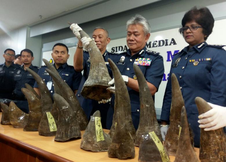 Cuernos de rinoceronte decomisados en el aeropuerto de Malasia