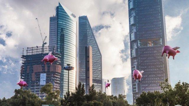 Cuando los #cerdosvuelen, la CDMX amaneció con cerdos voladores