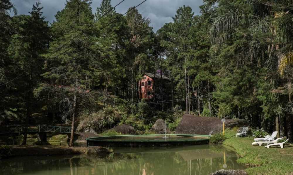 Casa de huéspedes de Antonio Vicente, quién plantó 31 hectáreas de selva