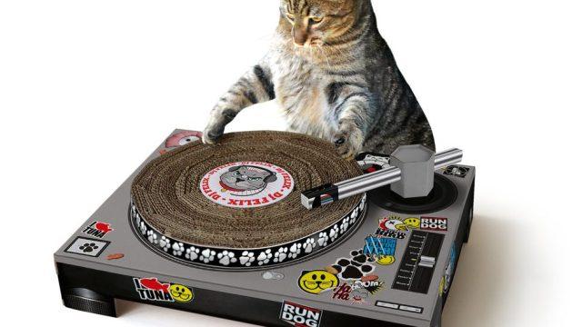 Tu gato ya puede ser DJ con esta tornamesa para felinos