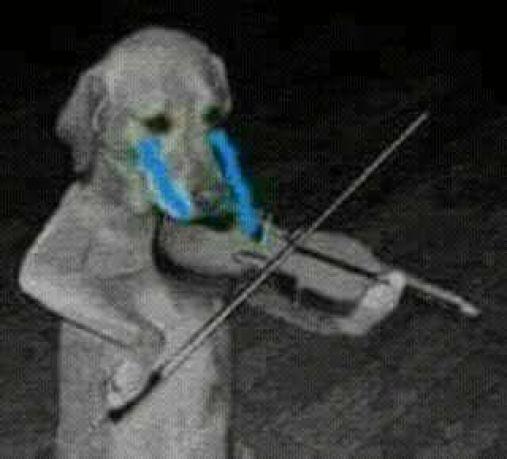 perrito tocando violin triste