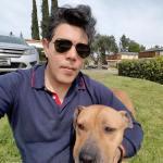 Actor recompensa por asesinos perros pitbull