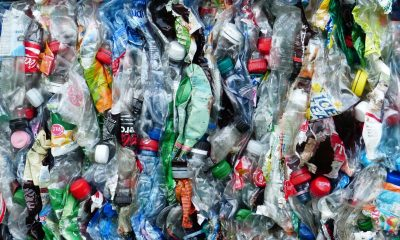 Globalmente hemos producido 8.3 mil millones de toneladas de plástico