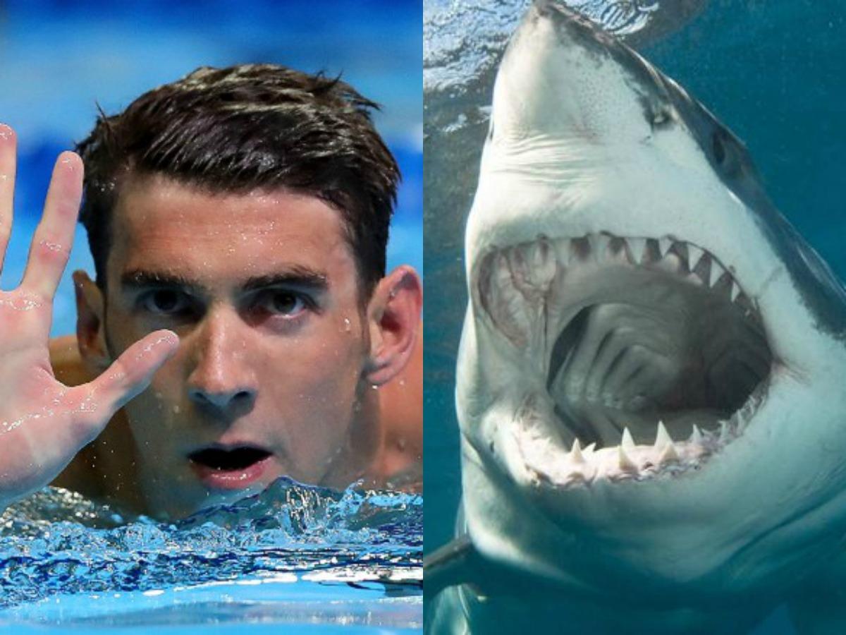 Michael Phelps nadó contra un tiburón blanco en una carrera simulada