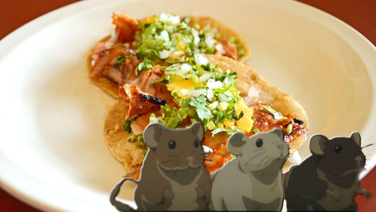 Tacos Frontera, de rata, de bistec, de pastor
