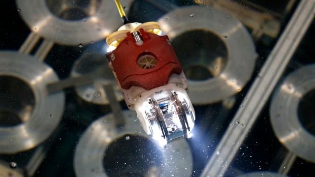 Robot pez luna, explorador de Fukushima