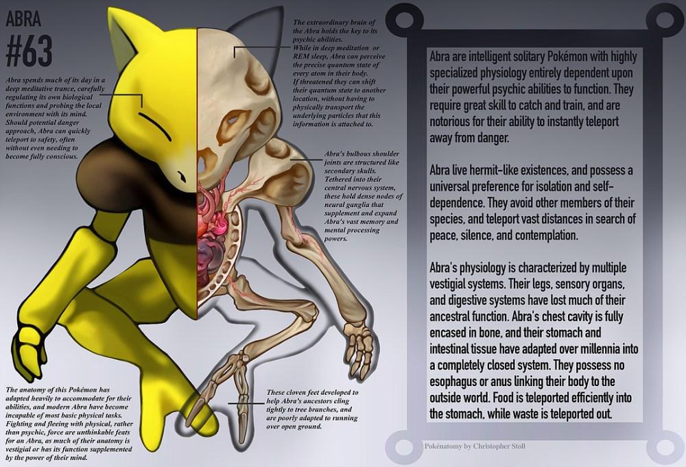PokéNatomy, un estudio de la anatomía de los pokémon, como Abra