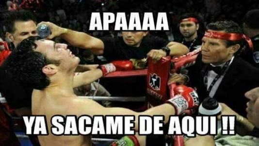 meme julio cesar chavez jr