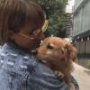 Mascotas, Dueños, Reencuentros, Sismo, Perros, Gatos