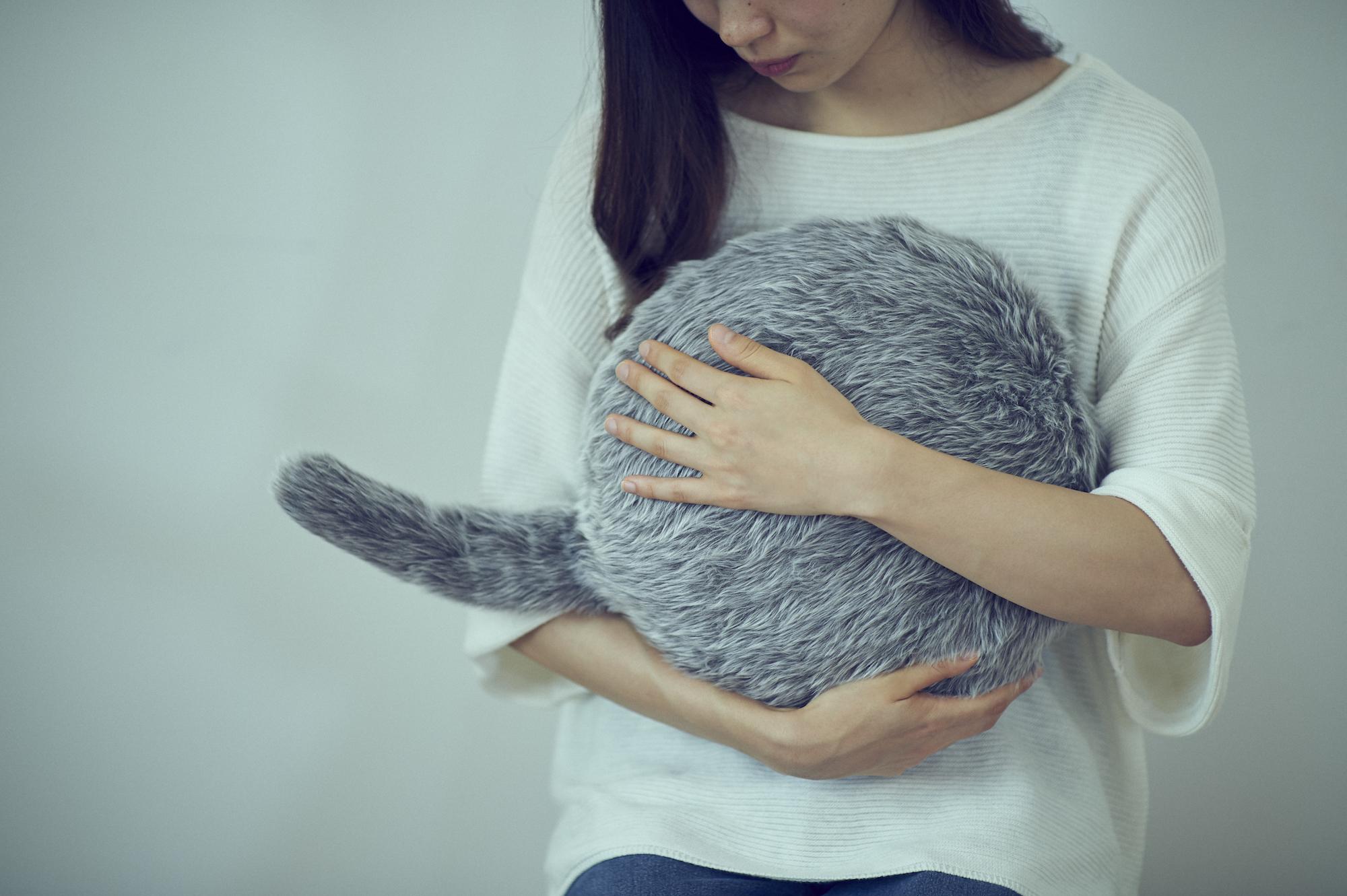 Japoneses venderán un robot terapéutico de gato… ¡pero sin cabeza!