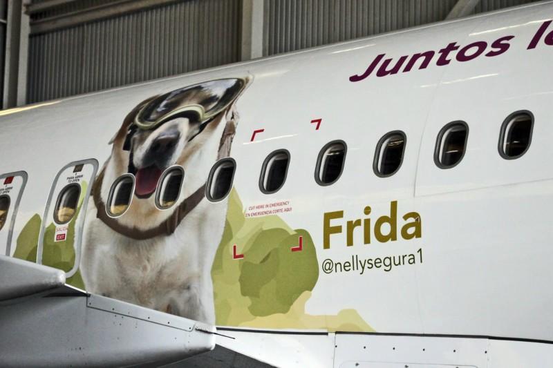 Aerolínea homenaje a Frida colocando imagen en un avión