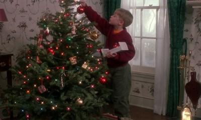 Cómo hacer para que tu árbol de navidad no muera pronto