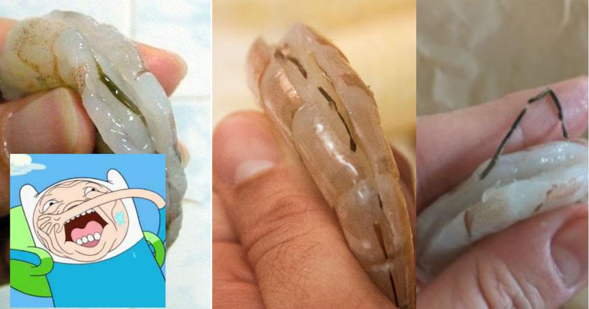 camarones-linea-negra-es-intestino-caca-plancton-algas