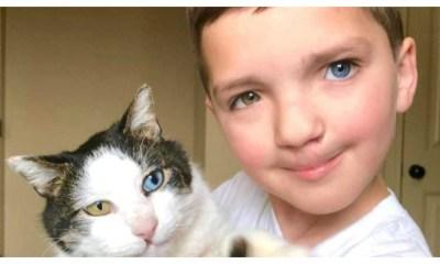 Niño y su gato con heterocromia