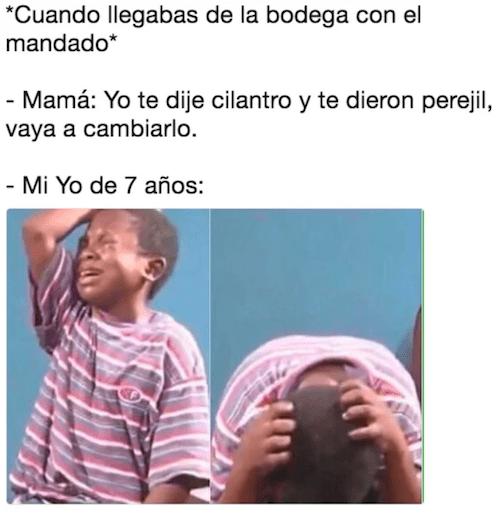 Meme-del-nino-llorando-3
