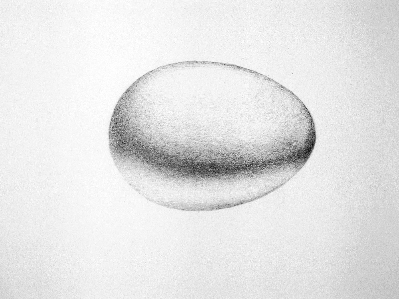dibujo-detallado-huevo-gallina-para-conocer-partes-educacion